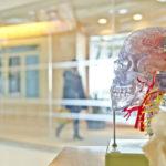 Związek epigenetyki z chorobami psychicznymi