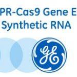 Bezpłatne szkolenie z CRISPR/CAS9 oraz RNAi